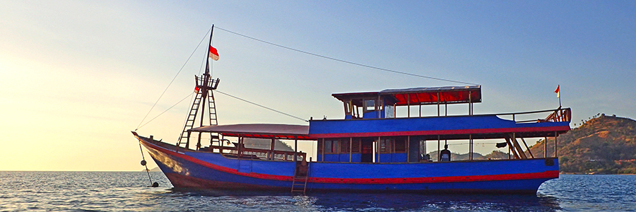 Day Boat Santai - Komodo National park