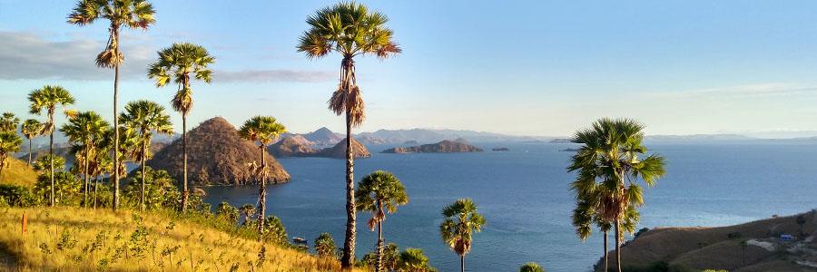 Insel Flores