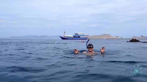 Diving in Komodo National Park - rewiew