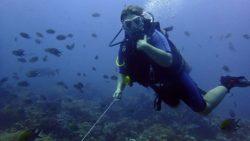 Отзыв Ларисы Спиридоновой о Wet Frog Divers
